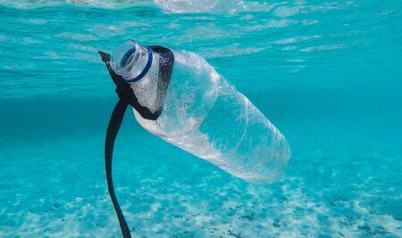 El enemigo silencioso: los plásticos de un solo uso